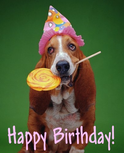 picture of a dog saying happy birthday ; Dog-Wishes-Happy-Birthday-Funny-Image