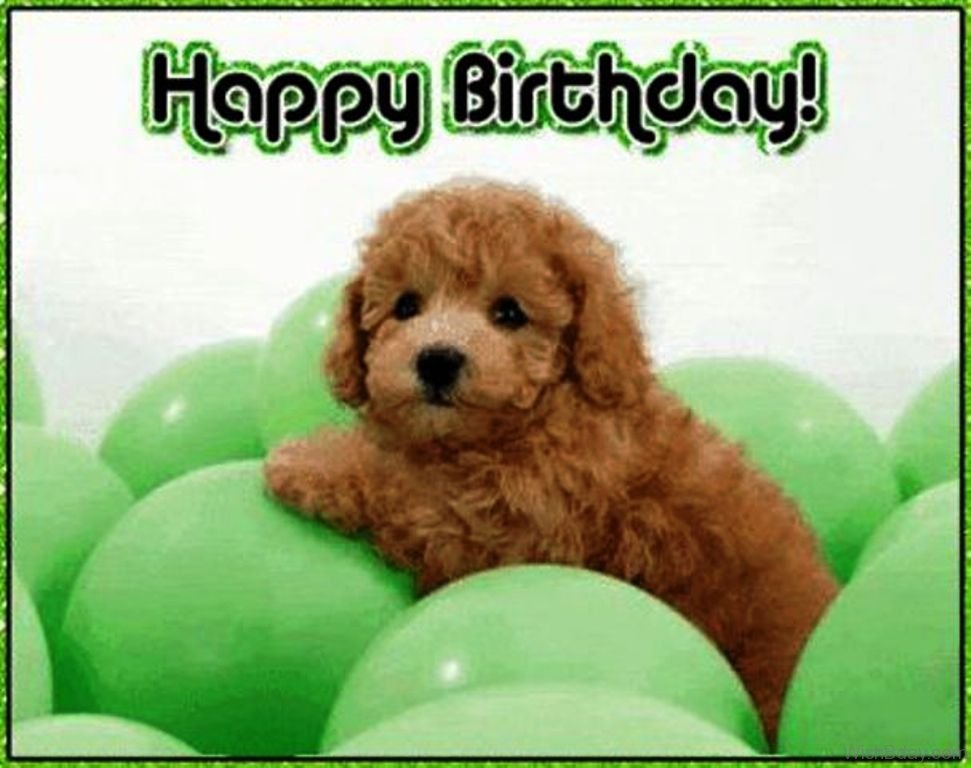 picture of a dog saying happy birthday ; Happy-Birthday-Dear-13