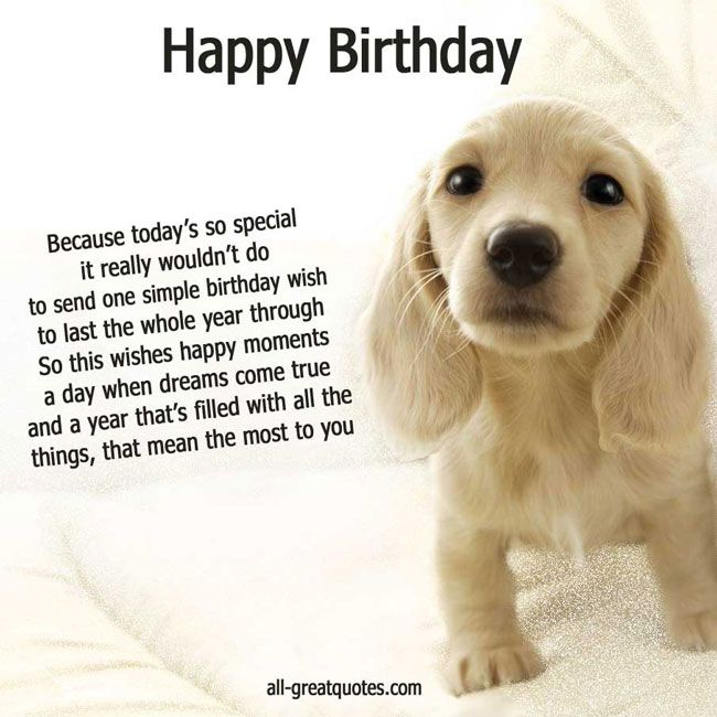 picture of a dog saying happy birthday ; b0739da06537874e38c17a54cf3a935d