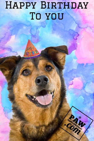 picture of a dog saying happy birthday ; blogger-image-1424301945