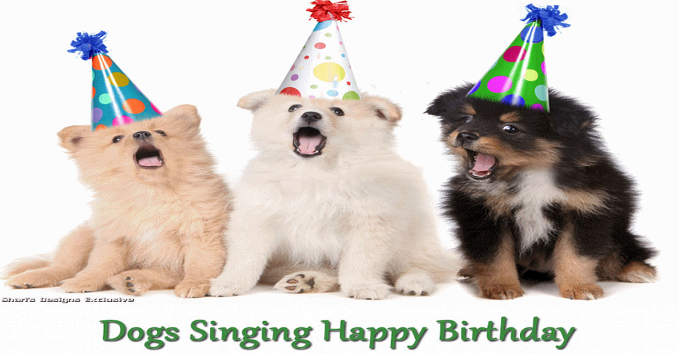 picture of a dog saying happy birthday ; dogs-singing-happy-birthday