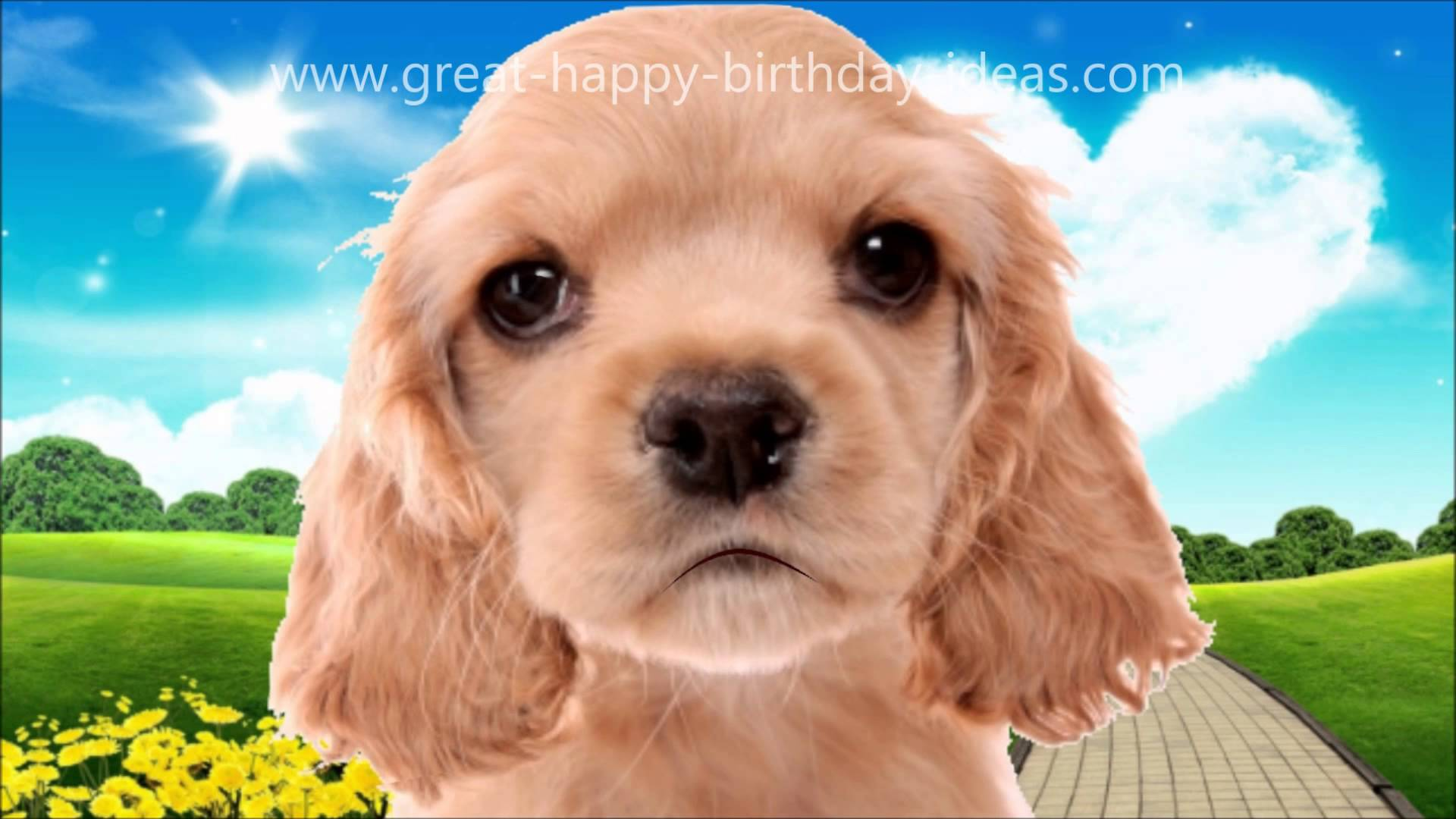 picture of a dog saying happy birthday ; maxresdefault