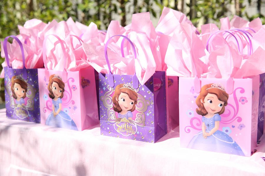 sample pictures of birthday giveaways ; Favor-Bags