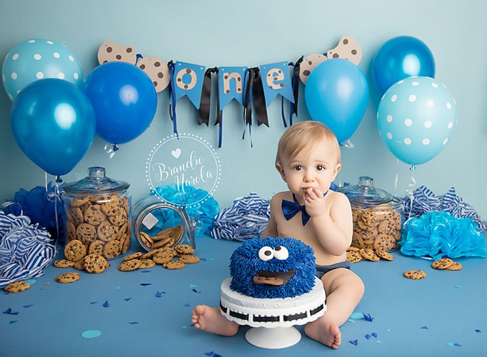 1st birthday boy photo ideas ; 35b24f21e5df44ffb8c0ceeb73a9a62d--cookie-monster-cakes-cookie-monster-first-birthday-party