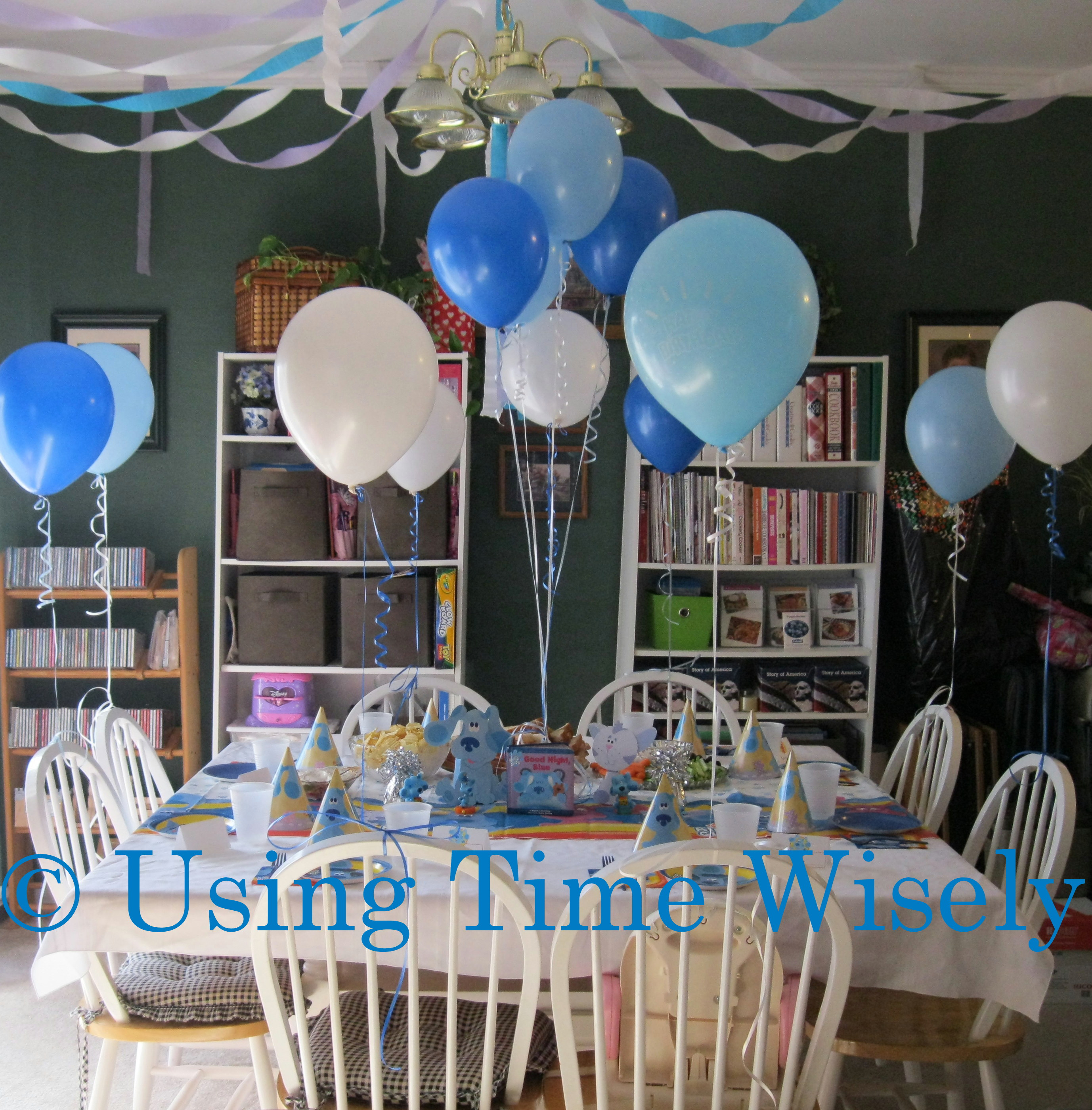 3 year old birthday party ; 147-001
