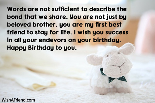 a birthday message to my brother ; 873-brother-birthday-messages