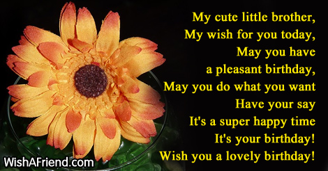 a birthday message to my brother ; i-want-to-wish-my-brother-a-happy-birthday-13124-brother-birthday-wishes