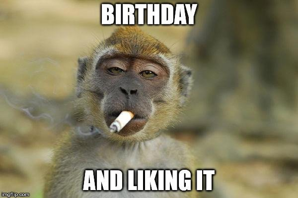 a funny birthday picture ; Birthday-and-liking-it