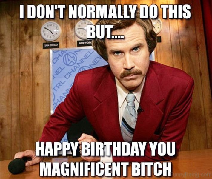 a funny birthday picture ; i-dont-normally-do-this-but-happy-birthday-you-magnificent-bitch-funny-memes