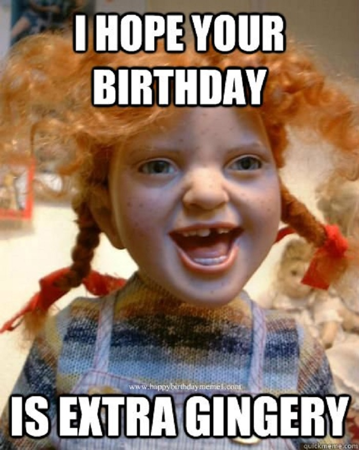 a funny birthday picture ; i-hope-your-birthday-is-extra-gingery-funny-memes