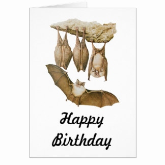 bat birthday card ; bat-birthday-card-new-bats-drawings-cards-greeting-amp-cards-of-bat-birthday-card