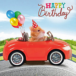 birthday card car ; s-l300