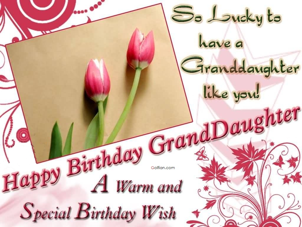 birthday card messages for granddaughter ; Happy-Birthday-Granddaughter-A-Warm-And-Special-Birthday-Wishes