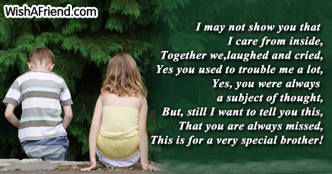 birthday poem for brother from sister in hindi ; 6675-poems-for-brother