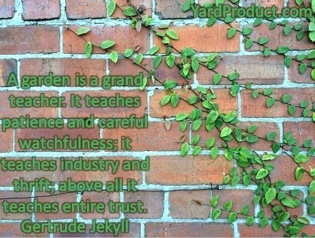 birthday quotes quote garden ; gardening-sayings-the-quote-garden-gardening-quotes-quotations-garden-yard-landscaping-manager-quotes-horticulture-sayings-quote-garden-birthday