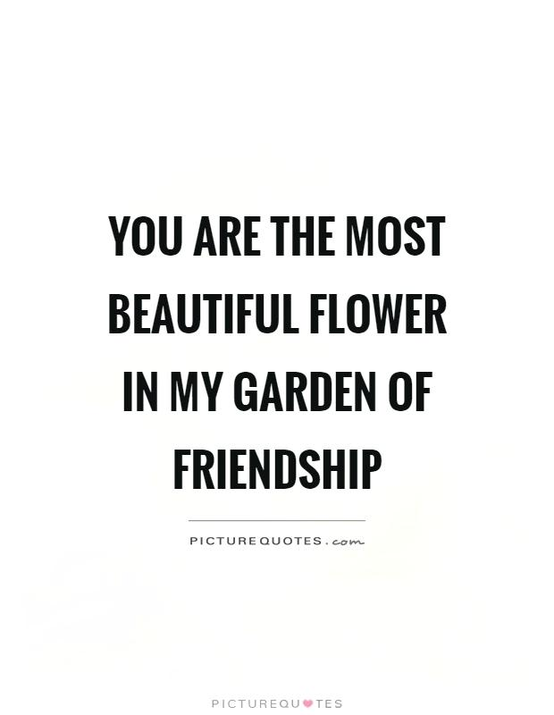 birthday quotes quote garden ; the-quote-garden-friendship-quotes-quote-garden-flower-quotes-sayings-picture-quote-garden-hope