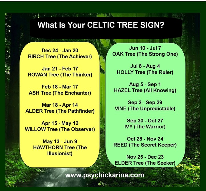 birthday tree sign ; tree-signs