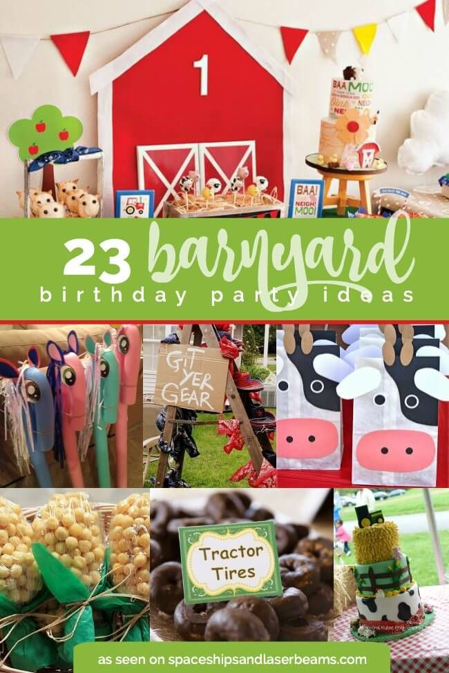 boy and girl birthday party ideas ; 1c81ff6b6d80a9e2415bb4c6903121e4--barn-birthday-party-ideas-barnyard-birthday-party-girl