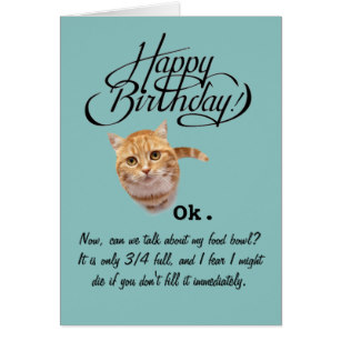 cat lady birthday card ; birthdays_from_a_cats_perspective_birthday_card_card-rd0dff0082fdc45ea90cd9626089feb2b_xvuat_8byvr_307