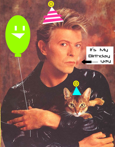 david bowie happy birthday ; BowieCatBirthday1