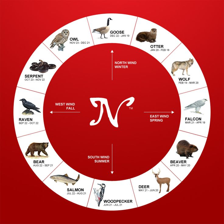find my horoscope sign birthday ; d855b43cb58ea997e26ac6d23cca81c8--native-american-indians-native-americans