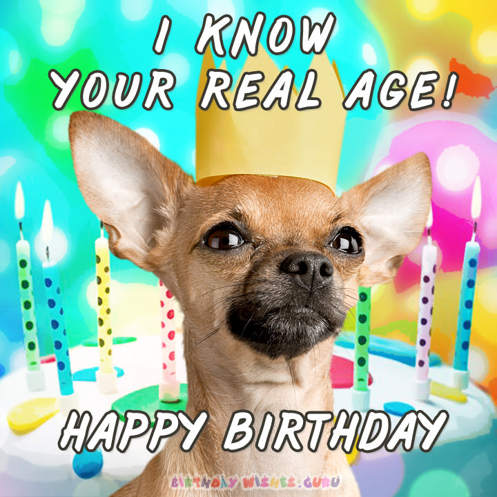 funny birthday greetings ; I-KNOW-YOUR-REAL-AGE-HAPPY-BIRTHDAY