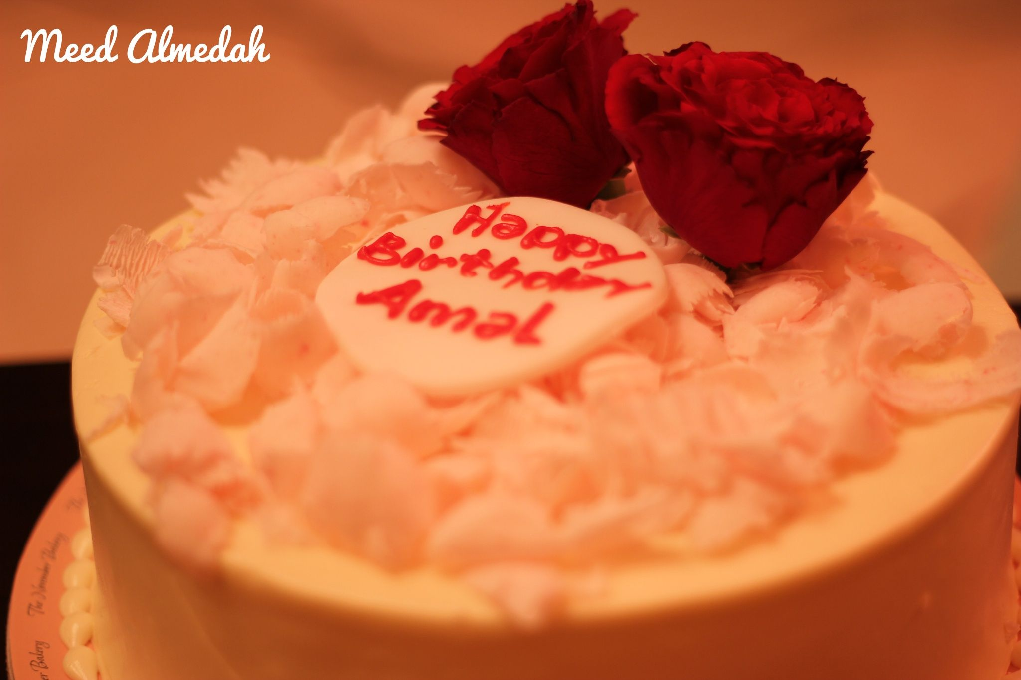 happy birthday amal ; f47e81b8411f5127bff33c96595aa1b8