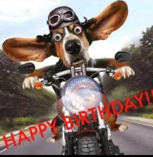 happy birthday biker ; happy-birthday-biker-images-lovely-25-best-ideas-about-funny-birthday-message-on-pinterest-of-happy-birthday-biker-images