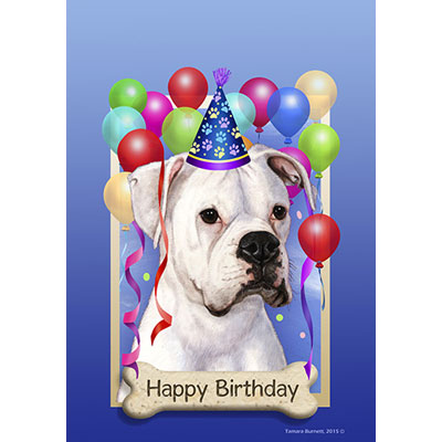 happy birthday boxer picture ; boxer-white-uncropped-58447