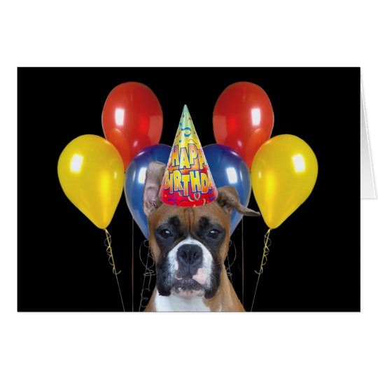 happy birthday boxer picture ; happy_birthday_boxer_greeting_card-rce1839a0dee64c1a86fb92fc0b6a7783_xvuak_8byvr_540