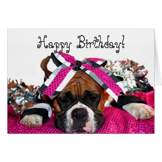 happy birthday boxer picture ; happy_birthday_cheerleader_boxer_greeting_card-rf89e4191758945db99a8acc26b45bb4b_xvuak_8byvr_540