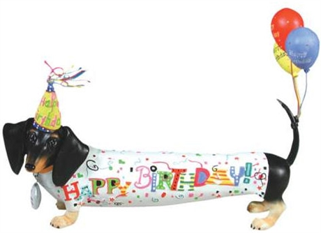 happy birthday dachshund ; 0000294_460