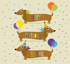 happy birthday dachshund ; 3821aa336852efa28ccad7e4c8d8742d--happy-birthday-pics-birthday-greetings