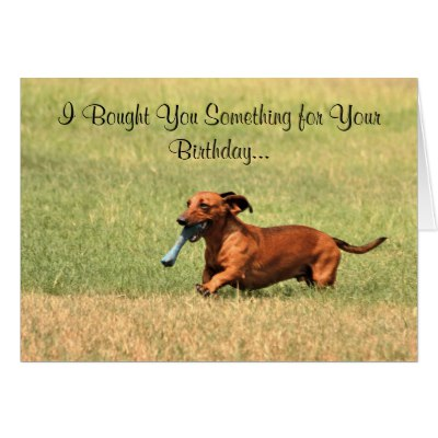 happy birthday dachshund ; funny_dachshund_dog_happy_birthday_card_card-r00c38ebef2af4a9e9e62499b3870e363_xvuak_8byvr_400