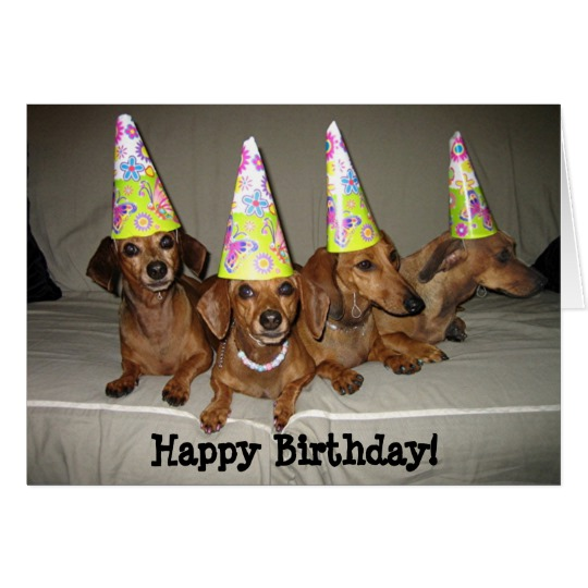 happy birthday dachshund ; happy_birthday_dachshund_card-r884c8b3b48f54f19bf65de95d557cf76_xvuak_8byvr_540