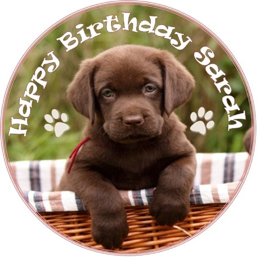 happy birthday lab ; chocolate-labrador-puppy-cake-topper-personalised-message-edible-icing-7-5-19cm-round-labrador-by-debs-kitchen-cakes_4547803