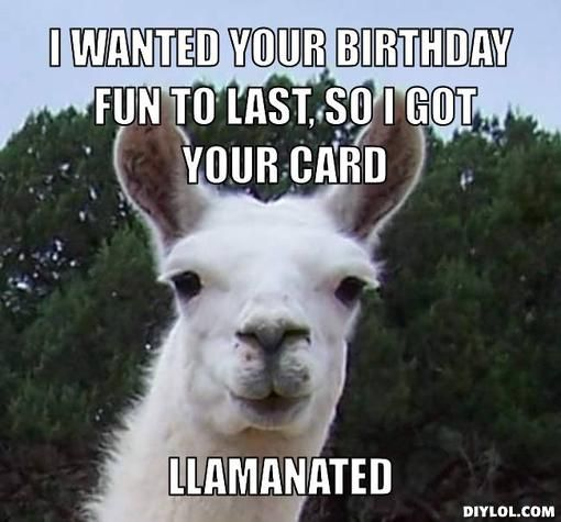 happy birthday llama ; 2a16baf64768ff9559fdca6d5e1aebc9--birthday-greetings-birthday-wishes