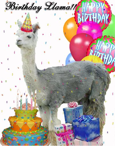 happy birthday llama ; 59e1c7fa958867408d8cf510a8cd5d8d