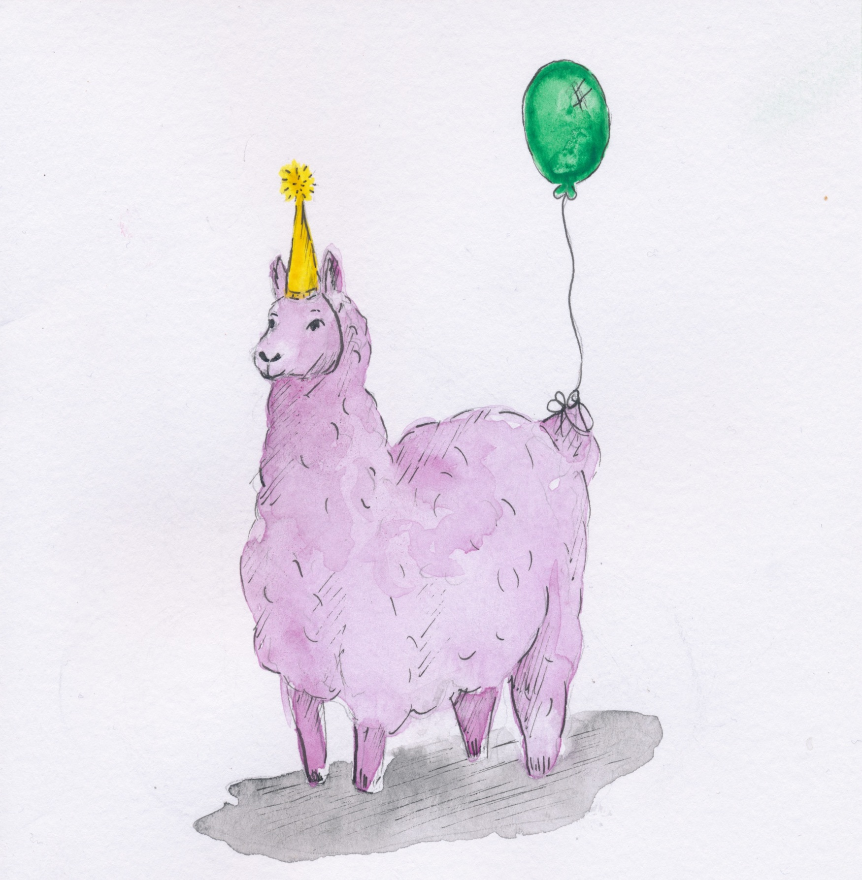 happy birthday llama ; Llama_1750