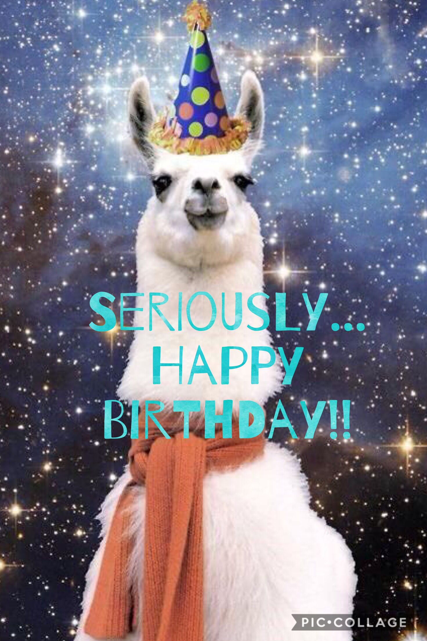 happy birthday llama ; cf1f7ae026f5d7c190301f99651b4f38