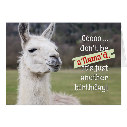 happy birthday llama ; humourous_birthday_card_the_happy_llama-ra4389e59d0c34272b84d11ec265b5425_xvuak_8byvr_540