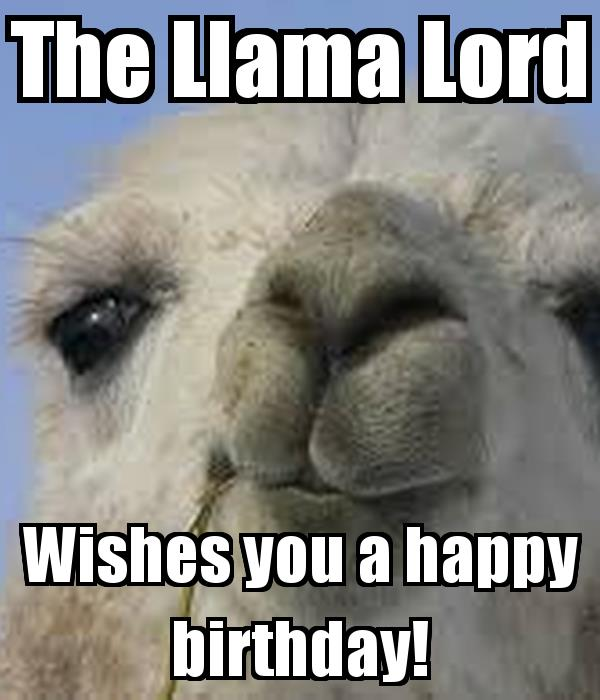 happy birthday llama ; the-llama-lord-wishes-you-a-happy-birthday