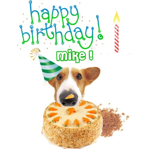 happy birthday mike ; a69ceee3a4b3058af60aaeba09997872
