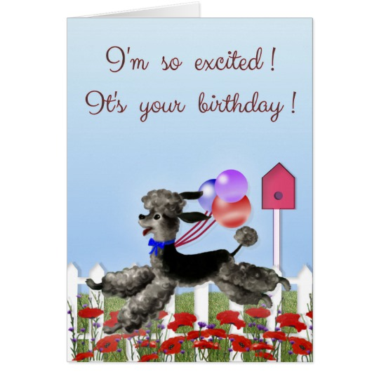happy birthday poodle greeting cards ; happy_birthday_excited_black_poodle_in_a_garden_card-r28f6af0a9a0743b38e0f00157250e6c7_xvuat_8byvr_540
