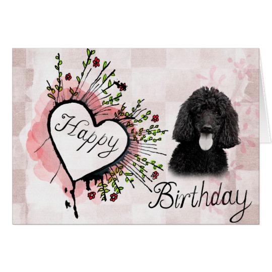 happy birthday poodle greeting cards ; poodle_dog_happy_birthday_greeting_card-re415a807304d4954b1104caf234d343f_xvuak_8byvr_540