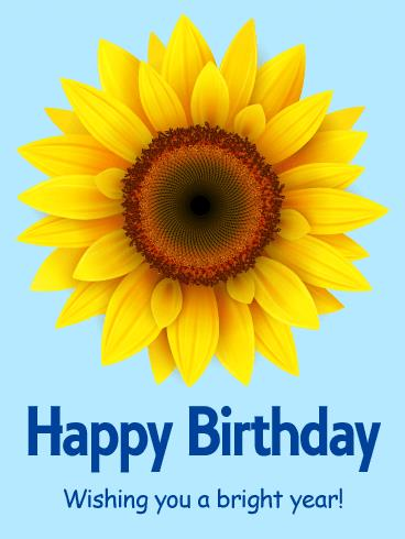 happy birthday sunflowers ; b_day296-5f566e46f4e7f9c0308543e53c6c42c8