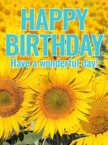 happy birthday sunflowers ; b_day308-af390cb6d84a21e19f73f24b98325e8a