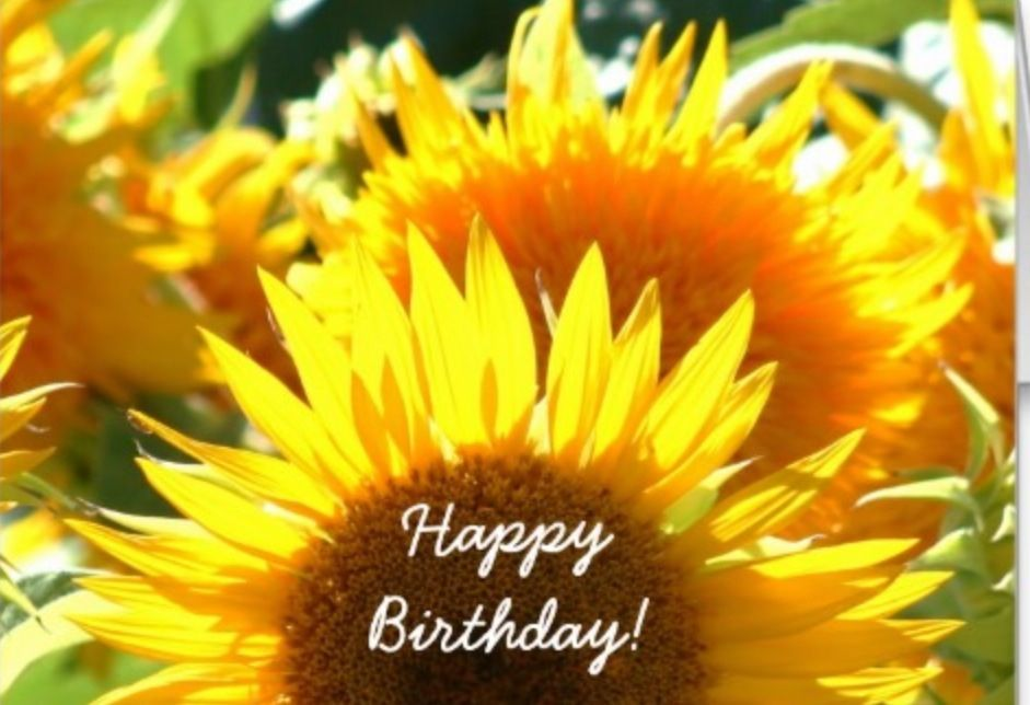happy birthday sunflowers ; d826c19ad461f7cad3f95f2b6b3415c8