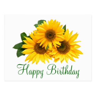 happy birthday sunflowers ; floral_happy_birthday_sunflower_yellow_flowers_postcard-rd4f1933fd53746929fba2065d785d994_vgbaq_8byvr_307