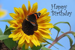 happy birthday sunflowers ; happy-birthday-card-butterfly-sunflower-text-68638946